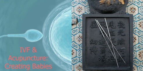 Acupuncture & IVF: Creating Babies Together